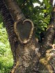 Artikel: Liefde, zien en gezien worden